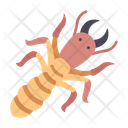 Insect Termite Wood Icon