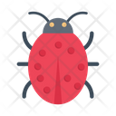 Insect Ladybird Biology Icon