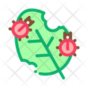 Insect Plants Icon