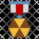 Insignia Icon