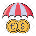 Insurance Money Security Icon