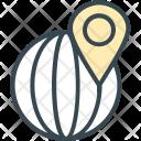 International Location Pin Icon