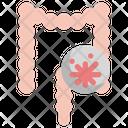 Cancer Intestine Organ Icon