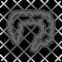 Intestine Icon