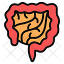Intestine Icon