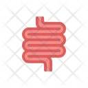 Intestine Anatomy Internal Icon