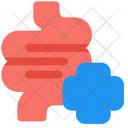 Intestine Health Intestine Health Icon