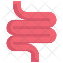 Intestines Icon