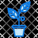 Invest Planet Icon