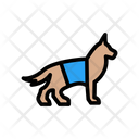 Dog Investigation Perro Icon