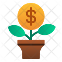 Investment Grow Gainer Icon