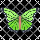 Isabella Wildlife Hexapod Icon