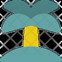 Island Travel Coconut Icon