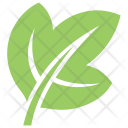 Ivy Leaf Icon