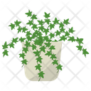 Ivy Potted Plant Icon