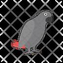 Parrot Jaco Bird Icon