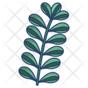 Jade Leaf Icon