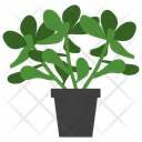 Jade Potted Plant Icon