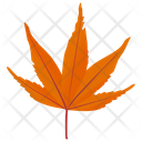 Japanese Maple Icon