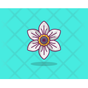 Jasmine Spring Flower Agriculture Icon