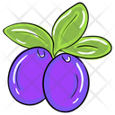 Java Plum Icon