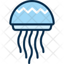 Jelly Fish Icon