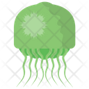 Jellyfish Jellies Sea Jellies Icon