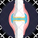 Human Anatomy Bone Joint Icon