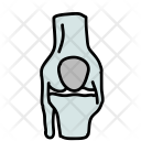 Joints Bone Icon