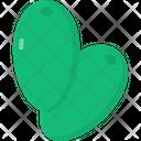 Jujube Icon