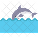 Jumping Whale Icon