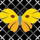 Junonia Almana Species Icon