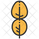 Kaffir Lime Leaf Icon
