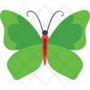 Kallima Inachus Insect Icon