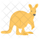 Kangaroo Socceroos Australian Animal Icon