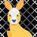 Kangaroo Animal Orycteropus Icon