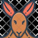 Kangaroo Animal Face Icon