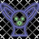 Kangaroo Animal Orycteropus Afer Icon