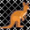 Kangaroo Wildlife Animal Icon
