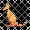 Kangaroo Mammal Australia Icon