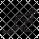 Kangaroo Mammal Animal Icon