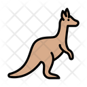 Kangaroo Mammal Zoo Icon