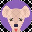 Kangaroo Land Zoo Icon