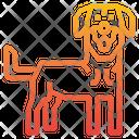 Kangla Dog Icon