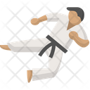 Arts Fight Judo Icon