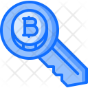 Key Bitcoin Coin Icon