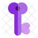 Key Love Valentine Icon