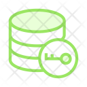 Key Database Icon