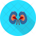 Kidney Medical Tool Icon