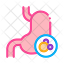 Human Kidney Cancer Icon